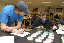 two male undergraduate students study subtances in petri dishes